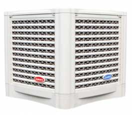 DK-30000TX-265x230